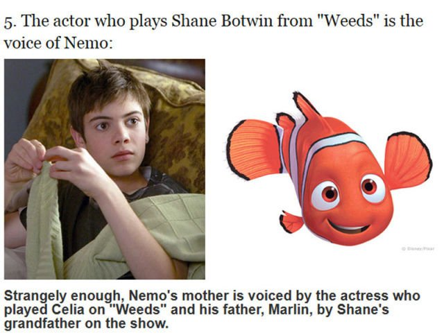 curious_facts_about_the_finding_nemo_movie_640_05