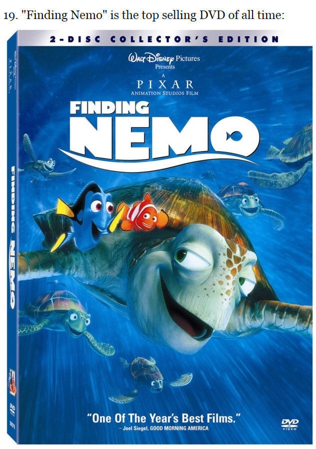 curious_facts_about_the_finding_nemo_movie_640_high_19